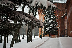 Fortaleza de Smolensk fotografía de archivo libre de regalías