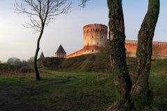 Fortaleza de Smolensk Fotografia de Stock