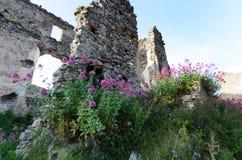 A fortaleza do século XIII na cidade de Santa Maria del Cedro, Itália imagens de stock