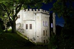 Fortaleza medieval antigua en el bosque oscuro profundo Foto de archivo libre de regalías