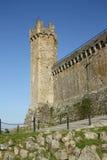 Fortaleza medieval em Montalcino (Itália) Imagens de Stock