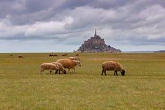 Fortaleza Mont Saint Michel de la abadía Foto de archivo libre de regalías