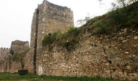 Fortaleza Smederevo Fotos de Stock Royalty Free
