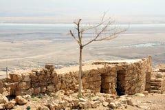 Fortaleza sobre el mar muerto Imágenes de archivo libres de regalías