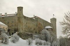 Fortaleza Toompea em Tallinn Fotografia de Stock