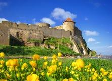 Fortaleza vieja y flores amarillas. Fotografía de archivo