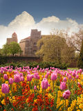 Fortaleza y tulipanes Imágenes de archivo libres de regalías