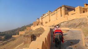 Fortbärnsten är en fästning som lokaliseras i Amer, en stad nära Jaipur, i staten av Rajasthan i Indien royaltyfri fotografi