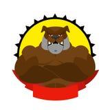 Forte cane Logo per la società polisportiva Bulldog con i grandi muscoli marchio Fotografia Stock