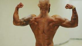 Forte culturista abbronzato che dimostra doppia posa posteriore del bicipite, uomo muscolare video d archivio