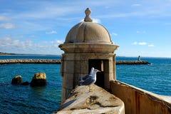 Forte da Ponta da Bandeira, Lagos, Portugal Stock Images