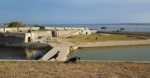 Forte de Jaffna - vista distante fotos de stock royalty free