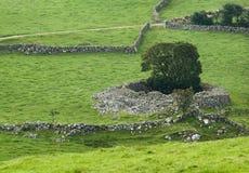 Forte de pedra Foto de Stock Royalty Free