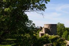 Forte de pedra histórico Koporye da fortaleza Imagem de Stock Royalty Free