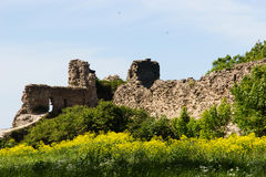 Forte de pedra histórico Koporye da fortaleza Fotos de Stock Royalty Free