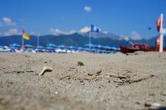 Forte dei Marmi Royaltyfri Foto