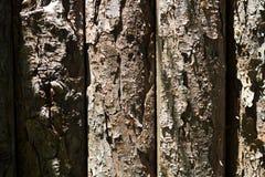 Forte fondo di legno Fotografia Stock