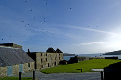 Forte Kinsale de Charles Foto de Stock