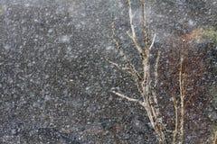 Forte nevicata Fotografia Stock Libera da Diritti