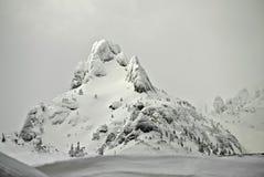 Forte nevicata Immagini Stock