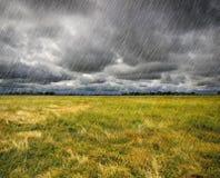 Forte pluie au-dessus d'une prairie Photographie stock libre de droits