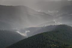 Forte pluie d'été au-dessus de forêt d'arbre de fourrure dans le secteur de montagne Photographie stock libre de droits
