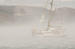 Forte vento Foto de Stock