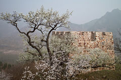 forteczna wielka huangya Tianjin ściana Obrazy Royalty Free