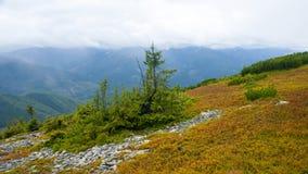 Fortement en montagnes Image libre de droits