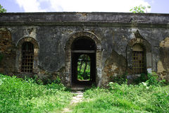 forten kriger Royaltyfri Bild