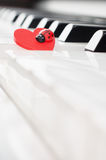 Fortepianowa klawiatura z czerwonym biedronka ornamentem - boczny widok Fotografia Stock
