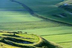 Fortepianowy Grande Di Castelluccio (Włochy) Obrazy Stock