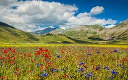 Fortepianowy Grande halny plateau, Umbria, Włochy fotografia stock