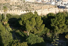 Forteresse Alcazaba Photos stock