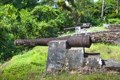 Forteresse Armes ? feu de Fort Zeelandia, Guyane Le fort la Z?lande est situ? sur l'?le de la rivi?re d'Essequibo E photographie stock
