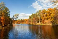 Forteresse colorée d'arbres d'automne à la rivière photos stock
