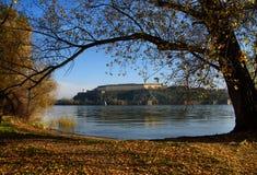 Forteresse de Petrovaradin à travers Danube image libre de droits