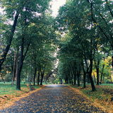 Forteresse pendant l'automne Photographie stock