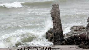 Fortes velhos em Liepaja, Letónia, mar Báltico vídeos de arquivo