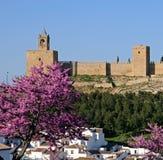 Fortezza del castello, Antequera, Andalusia Spagna. Fotografia Stock Libera da Diritti