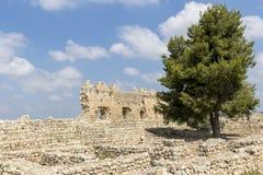 Fortezza di Antipatris Immagine Stock Libera da Diritti