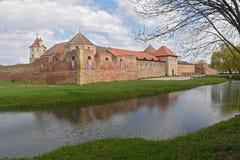 Fortezza di Fagaras nella contea di Brasov, Romania fotografia stock