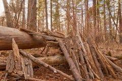 Fortezza di legno Immagine Stock