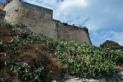 Fortezza di pietra Immagini Stock
