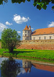 Fortezza Transyilvania di Fagaras Fotografia Stock