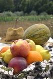 Fortfarande bär frukt sommar på en tabell Royaltyfri Fotografi