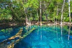 Fortfarande sjö i den mörka skogen, Dominikanska republiken Royaltyfria Bilder