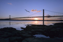 Forth Road Bridge - Edinburgh - Scotland Royalty Free Stock Photo
