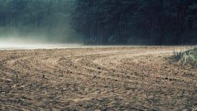 Forti venti che spazzano suolo nutricious fuori dal terreno coltivabile di recente arato archivi video