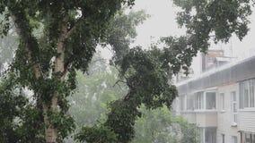 Forti venti e pioggia stock footage